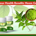 Numerous Health Benefits Neem Contains 1