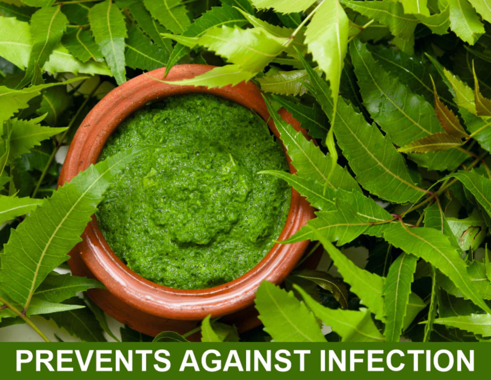 Numerous Health Benefits Neem Contains 11